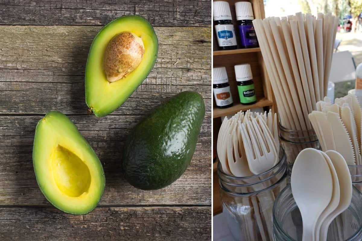 Biofase avocado