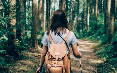 Terapia Forestale come strumento di medicina preventiva