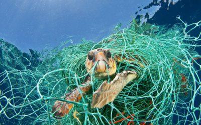''Le reti fantasma'': una nuova fonte di inquinamento marino