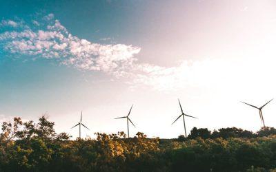 Sostenibilità 360: piccoli gesti grandi rivoluzioni